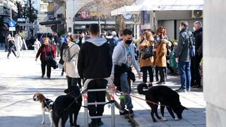 Σεισμός Ελασσόνα: «Χορός» μετασεισμών μετά την ισχυρή δόνηση