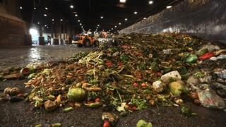 Αποκαρδιωτικό: Σχεδόν 1 δισεκ. τόνοι τροφίμων καταλήγουν στα σκουπίδια κάθε χρόνο