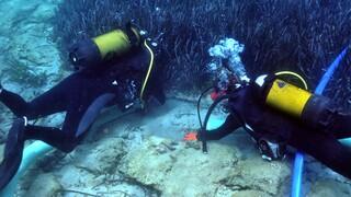 Υποβρύχια έρευνα στην Κρήτη: Εντυπωσιακές εικόνες της βυθισμένης πόλης του αρχαίου Ολούντος