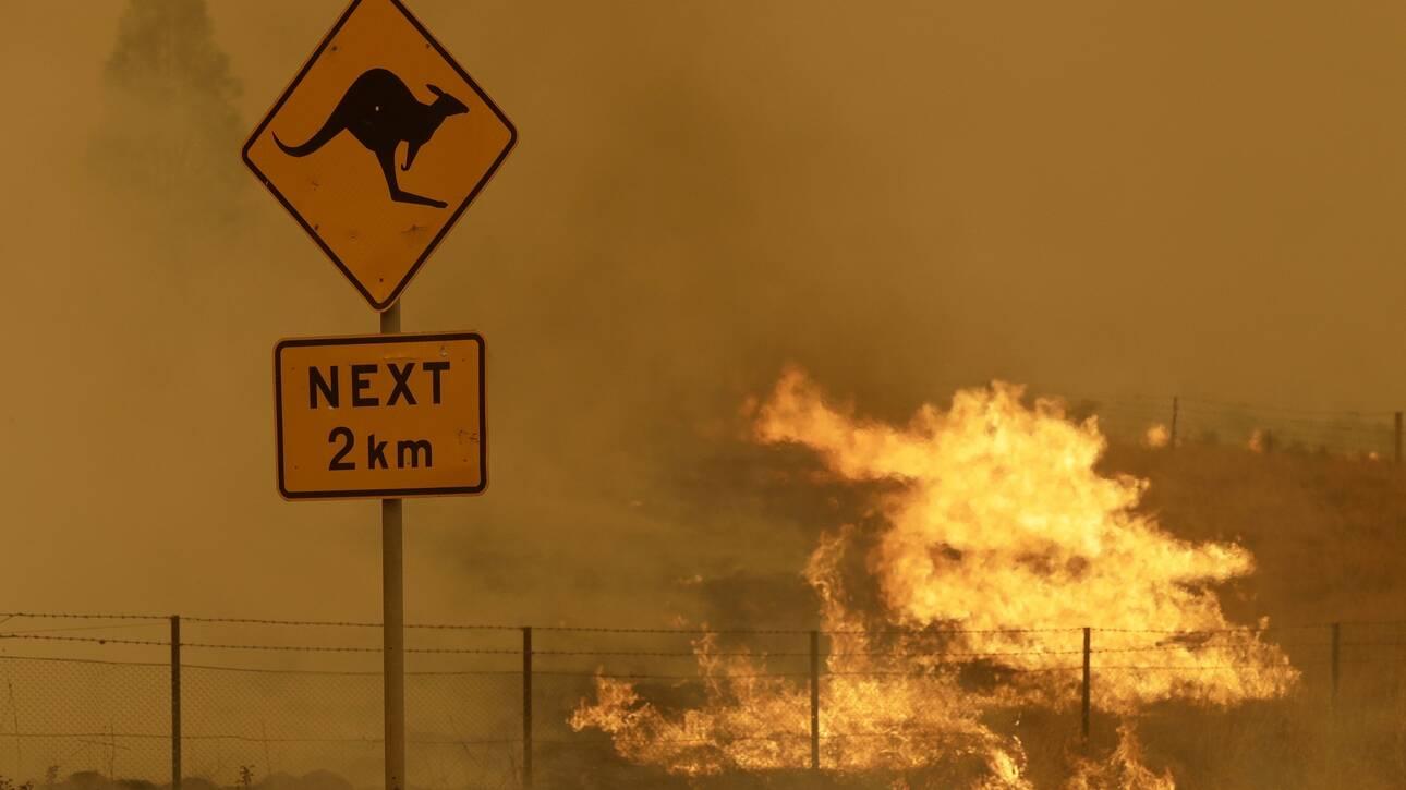 Αυστραλία: Οι μαθητές «αφηγούνται» την ιστορία των καταστροφικών πυρκαγιών του 2019/2020