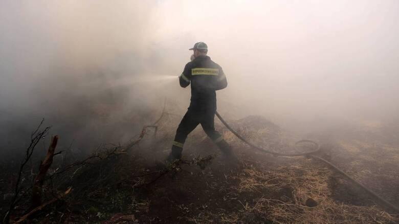 Σε εξέλιξη αυτή την ώρα πυρκαγιά στην Εύβοια