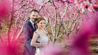 Παγκόσμια ζήτηση για γαμήλια φωτογράφιση στις ανθισμένες ροδακινιές της Ημαθίας