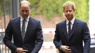Ο Χάρι μίλησε με τον πρίγκιπα Ουίλιαμ μετά τη συνέντευξη στην Όπρα