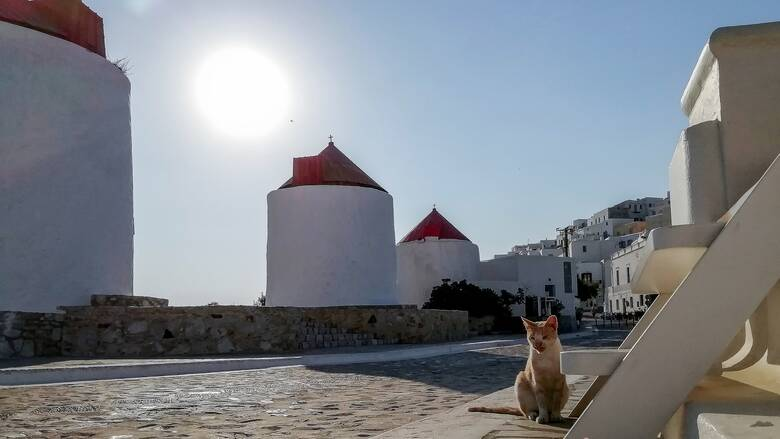 «Ήλιος, θάλασσα και Covid free»: Το γερμανικό Der Spiegel σε μία «ωδή» για τα μικρά ελληνικά νησιά