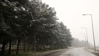 Αγριεύει ο καιρός: Καταιγίδες, χιόνια και πτώση θερμοκρασίας έως και 10 βαθμούς