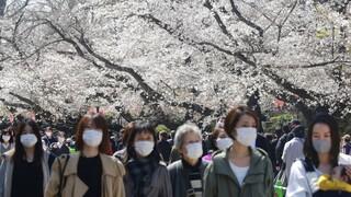 Κορωνοϊός: Οι κερασιές άνθισαν στα πάρκα αλλά οι Ιάπωνες δεν μπορούν να γιορτάσουν