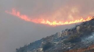 Φωτιά Άνδρος: Ενισχύονται οι πυροσβεστικές δυνάμεις - Κλιμάκιο της ΔΑΕΕ με εντολή Χαρδαλιά στο νησί