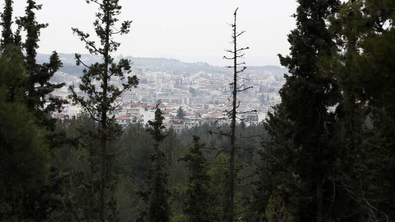 Σκρέκας για δασικούς χάρτες: Έρχονται διορθώσεις στις αστοχίες χωρίς ταλαιπωρία για τους πολίτες