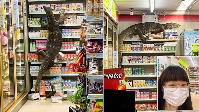 Πανικός σε κατάστημα στην Ταϊλάνδη μετά από εισβολή γιγάντιας σαύρας