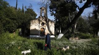 Κορωνοϊός - Χαρδαλιάς για Πάσχα: «Απέχουμε τρεις εβδομάδες, ας κάνουμε λίγο υπομονή»