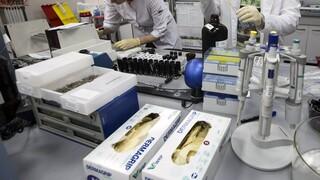 Συρίγος: Αύξηση θνησιμότητας στους πιο συχνούς καρκίνους τα επόμενα χρόνια λόγω πανδημίας