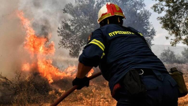 Φωτιά στη Σάμο: Μάχη δίνουν πυροσβέστες και εθελοντές, ανάμεσα σε οικισμούς οι φλόγες