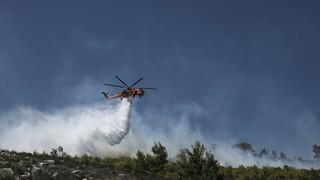 Φωτιά στη Σάμο: Σε ύφεση το πύρινο μέτωπο ανάμεσα σε οικισμούς