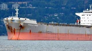 Επιστρέφουν μετά από πολύμηνη ταλαιπωρία οι Έλληνες ναυτικοί του πλοίου «ANGELIC POWER»