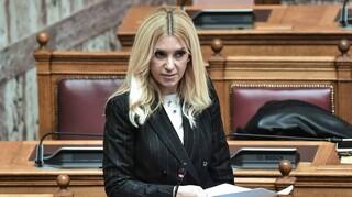 Αραμπατζή: Αυστηρότεροι έλεγχοι για την προστασία της ελληνικής οικονομίας και παραγωγής