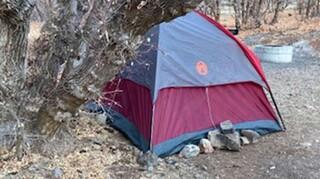 ΗΠΑ: 47χρονη επιβίωσε πέντε μήνες σε δάσος τρώγοντας χόρτα και βρύα