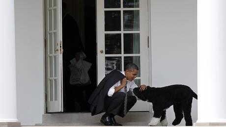 Πέθανε ο Μπο, ο σκύλος της οικογένειας Ομπάμα και… σταρ του Λευκού Οίκου