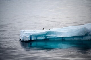 Την κλιματική αλλαγή και όχι την πανδημία, αξιολογούν οι νέοι ως σοβαρότερο πρόβλημα