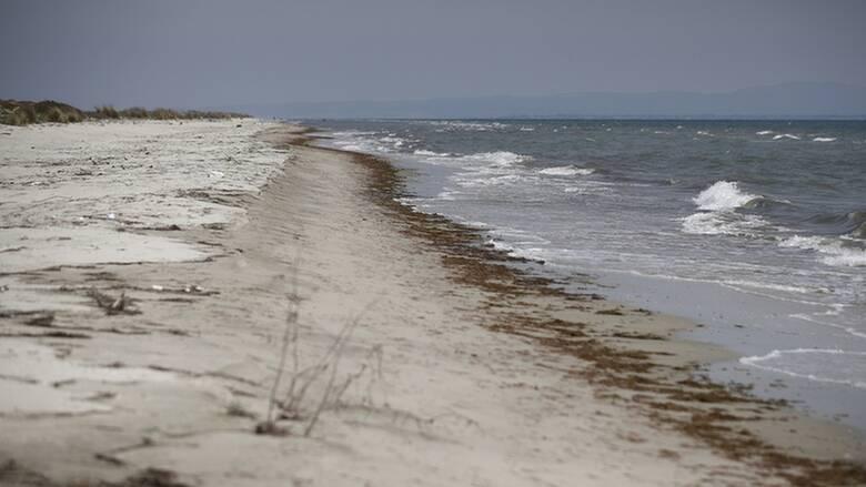 «Κραυγή» προστασίας για τη λιμνοθάλασσα Αλυκής Κίτρους