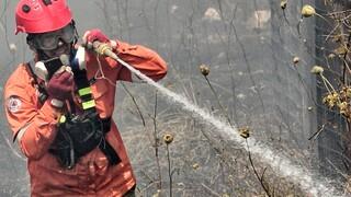 Φωτιά στην Μάνδρα – Μεγάλη κινητοποίηση της Πυροσβεστικής