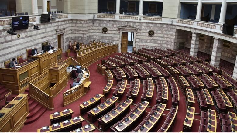 Στην Ολομέλεια το νομοσχέδιο για τη συνεπιμέλεια