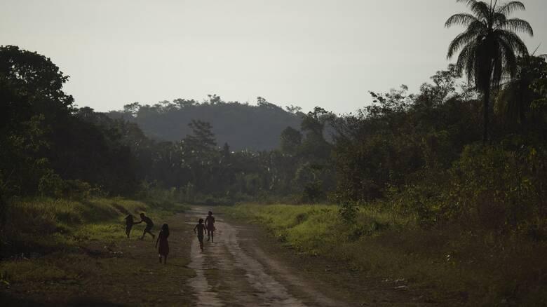 Έκθεση - κόλαφος για την παράνομη αποψίλωση του δάσους του Αμαζονίου