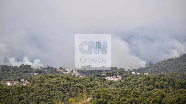Φωτιά στο Σχίνο: Καπνός και στάχτες στο κέντρο της Αθήνας