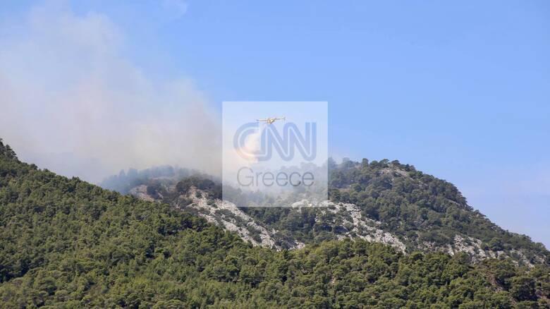 Φωτιά στο Σχίνο: Κάηκαν σπίτια, εκκενώθηκαν οικισμοί - Kατευθύνεται προς τα Γεράνεια όρη