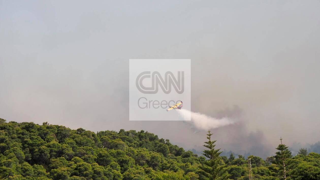 https://cdn.cnngreece.gr/media/news/2021/05/20/266661/photos/snapshot/fotia-sxinos-5.jpg