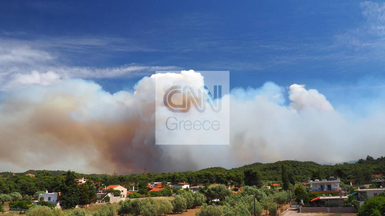 https://cdn.cnngreece.gr/media/news/2021/05/20/266661/photos/snapshot/fotia-sxinos-kentriki.jpg