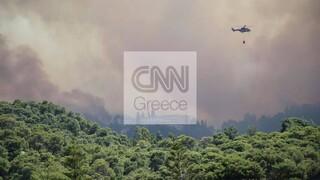 Προς Μέγαρα το πύρινο μέτωπο: Μήνυμα από το 112 για εκκένωση οικισμών