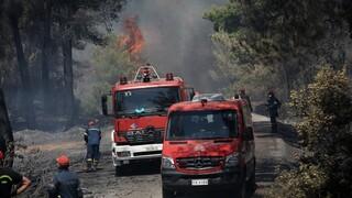 Φωτιά στον Σχίνο: Έως τις Κυκλάδες και την Ικαρία o καπνός και η στάχτη