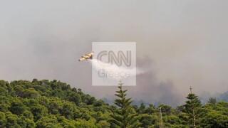 Φωτιά Σχίνος: Εκκενώνεται και το Αλεποχώρι - Κοντά στο χωριό η πυρκαγιά