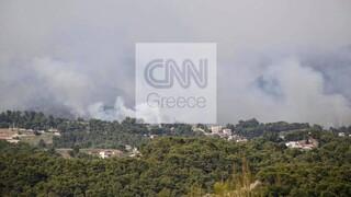 Φωτιά Σχίνος: Πρόβλεψη για ενίσχυση των ανέμων - Δήμαρχος Μεγάρων: Η πυρκαγιά γίνεται ανεξέλεγκτη