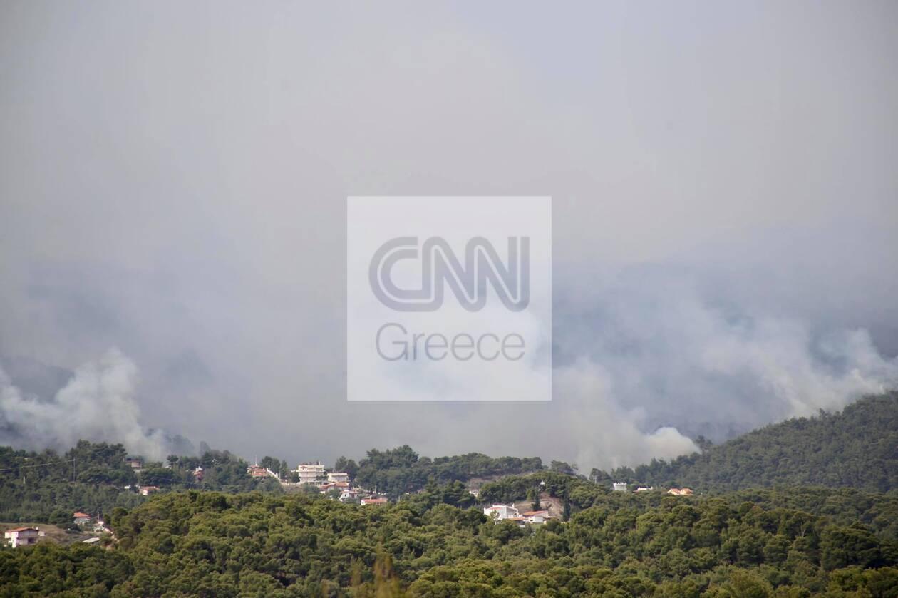 https://cdn.cnngreece.gr/media/news/2021/05/20/266719/photos/snapshot/fotia-loutraki-5.jpg