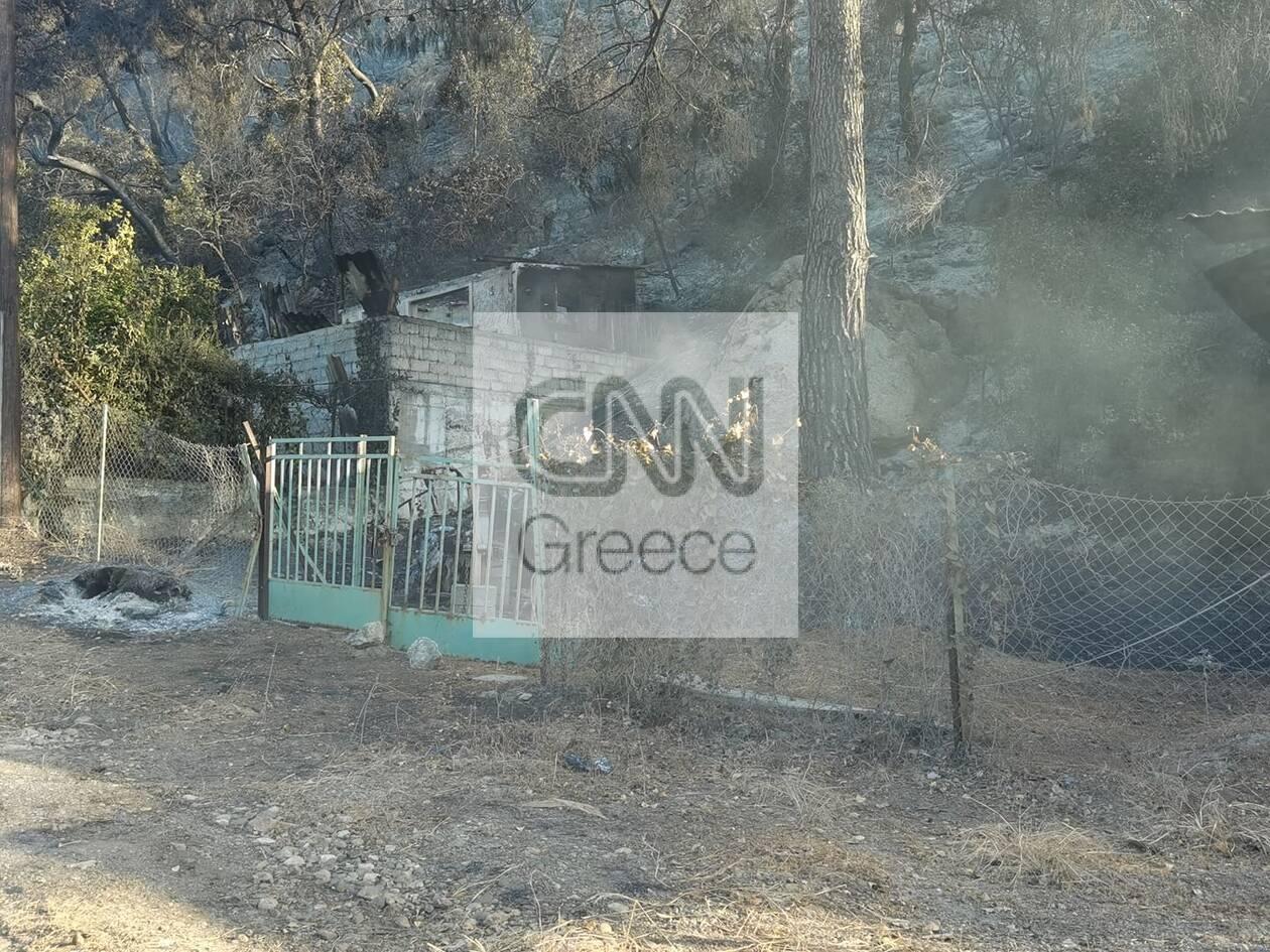 https://cdn.cnngreece.gr/media/news/2021/05/20/266719/photos/snapshot/fotia-sxino-2.jpg