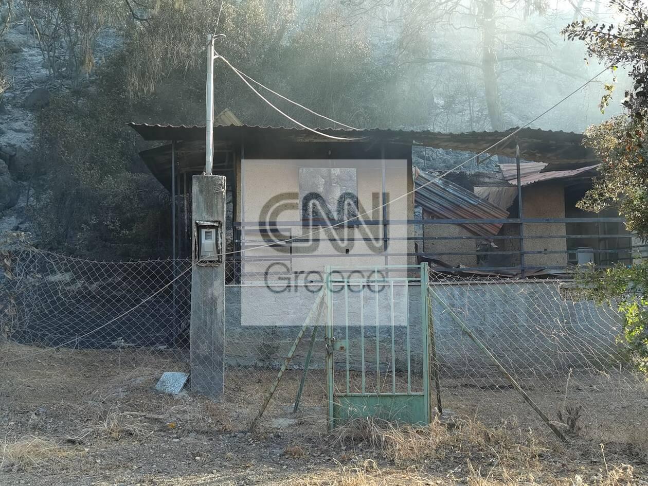 https://cdn.cnngreece.gr/media/news/2021/05/20/266719/photos/snapshot/fotia-sxino-3.jpg