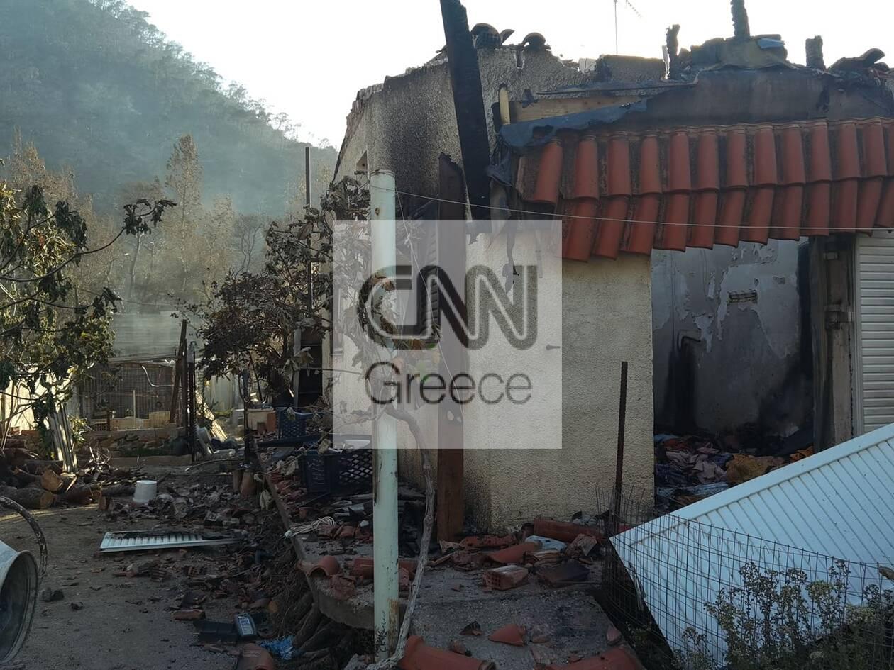 https://cdn.cnngreece.gr/media/news/2021/05/20/266719/photos/snapshot/fotia-sxino-7.jpg