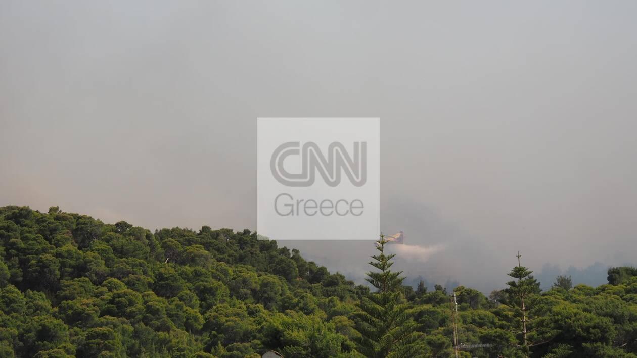 https://cdn.cnngreece.gr/media/news/2021/05/20/266719/photos/snapshot/fotia-sxinos-6.jpg