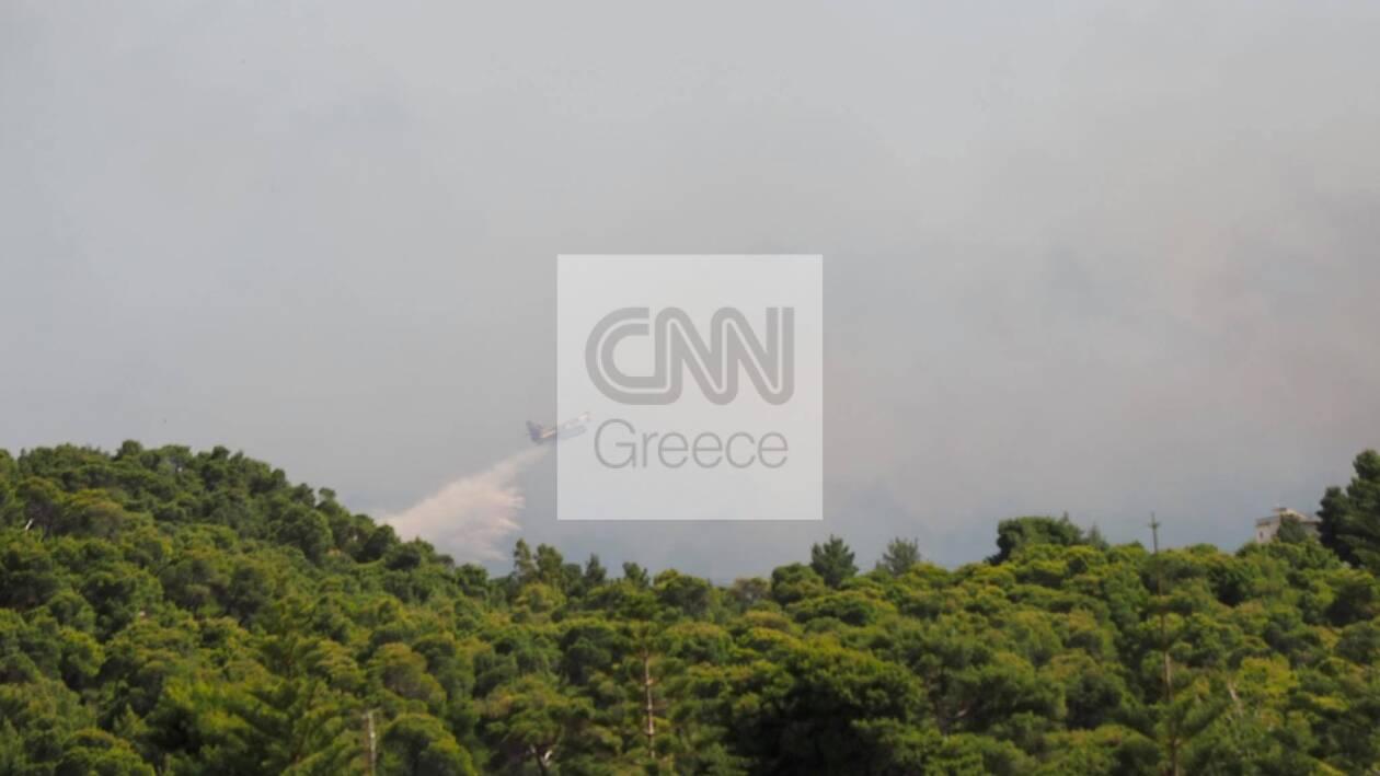 https://cdn.cnngreece.gr/media/news/2021/05/20/266719/photos/snapshot/fotia-sxinos.jpg