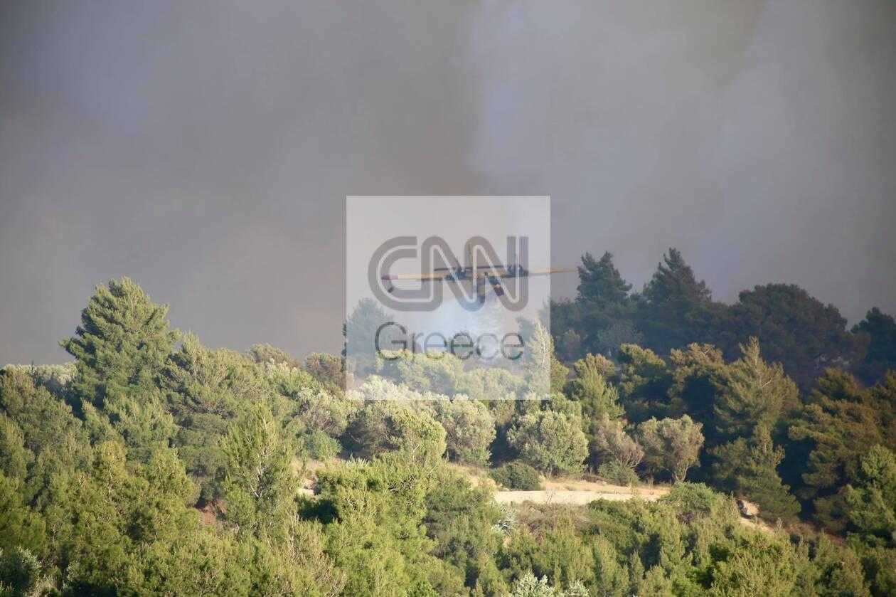 https://cdn.cnngreece.gr/media/news/2021/05/21/266854/photos/snapshot/spiti-fotia-83.jpg