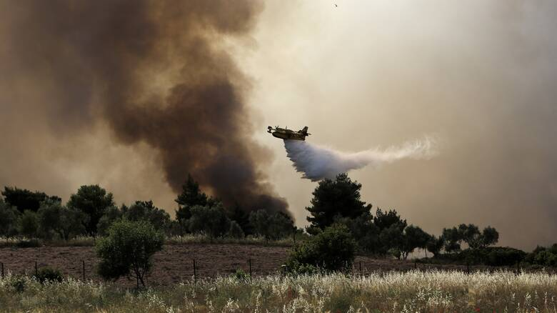 Πυρκαγιές: Οι περιοχές υψηλής επικινδυνότητας στην Αττική