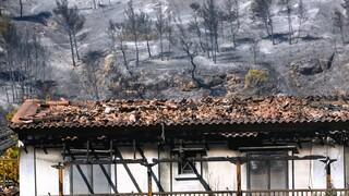 Φωτιά στον Σχίνο: Οι συνθήκες που οδήγησαν στην καταστροφή