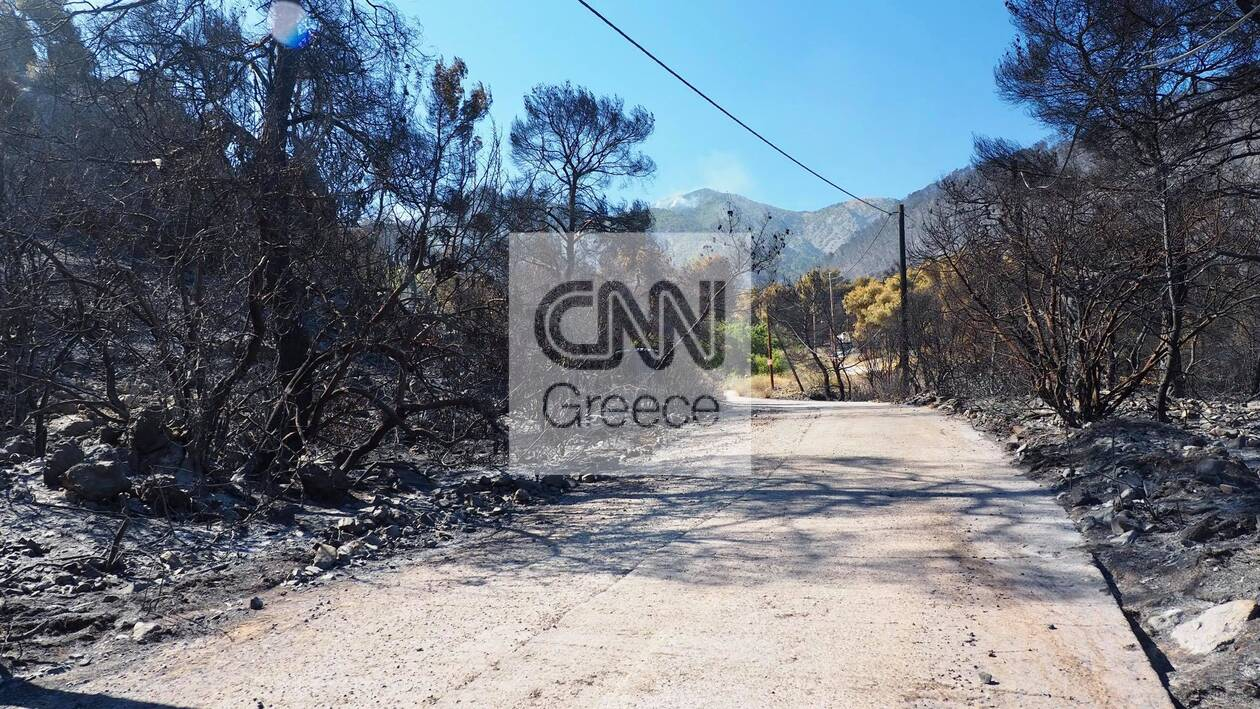 https://cdn.cnngreece.gr/media/news/2021/05/22/266966/photos/snapshot/fotia-sxino-5.jpg