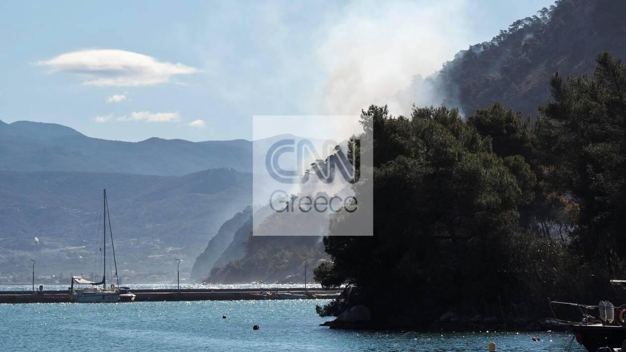 https://cdn.cnngreece.gr/media/news/2021/05/22/266966/photos/snapshot/fotia-sxinos-4.jpg