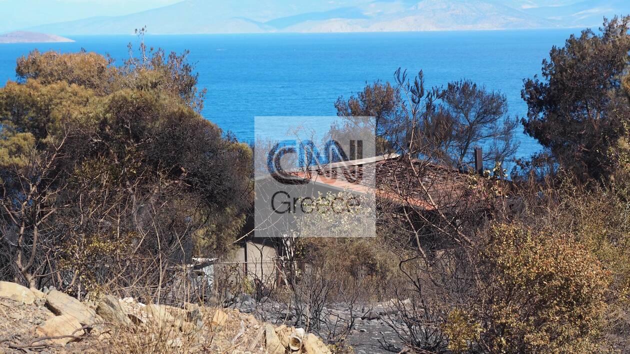 https://cdn.cnngreece.gr/media/news/2021/05/22/266966/photos/snapshot/fotia-sxinos-9.jpg