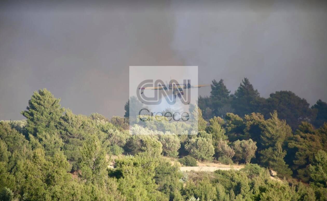 https://cdn.cnngreece.gr/media/news/2021/05/22/266966/photos/snapshot/pyr6.jpg