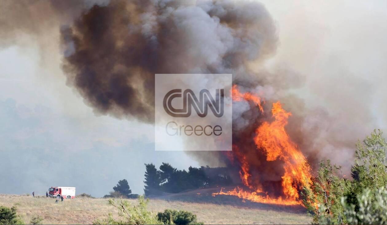 https://cdn.cnngreece.gr/media/news/2021/05/22/266966/photos/snapshot/zax1.jpg