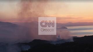 Φωτιά Σχίνος: Βελτιώνεται η εικόνα, κόπασαν οι άνεμοι - Παραμένουν διάσπαρτες εστίες