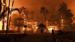 Φωτιά στα Γεράνια Όρη: Αυτά είναι τα μέτρα ανακούφισης των πληγέντων